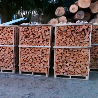 immagine con legno in bancali